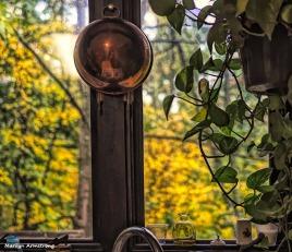 Autumn window from the kitchen