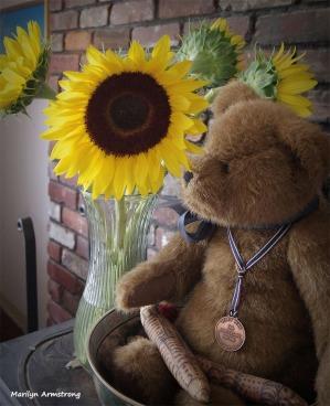 300-Glow-Sunflowers-05042018_004