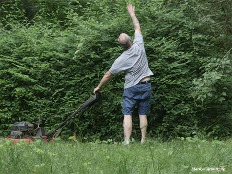 180-Owen-Taming-Backyard-Late-June-Garden-240618_045