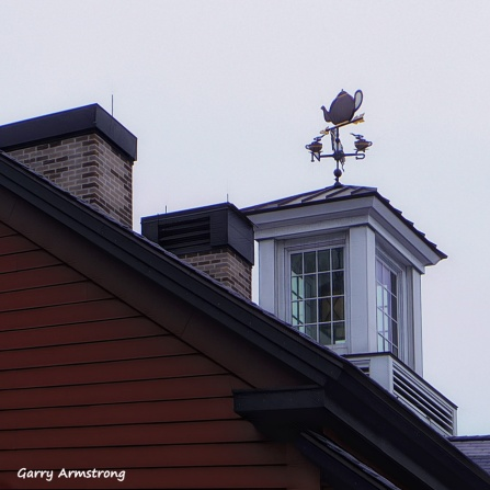 300-Tea-Cups-Square-Roof-Wharf-Boston-GA-052916_148