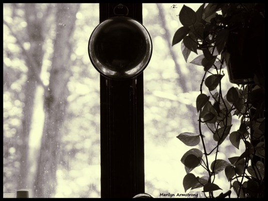 300-bw-window-kitchen-plants-210718_201