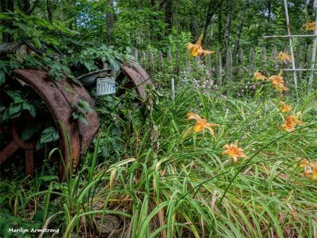 300-Tractor-Final-June-Garden-290618_007