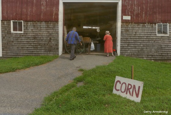180-Barn-Ben-Marilyn-Corn-Farm-GAR-170818_138