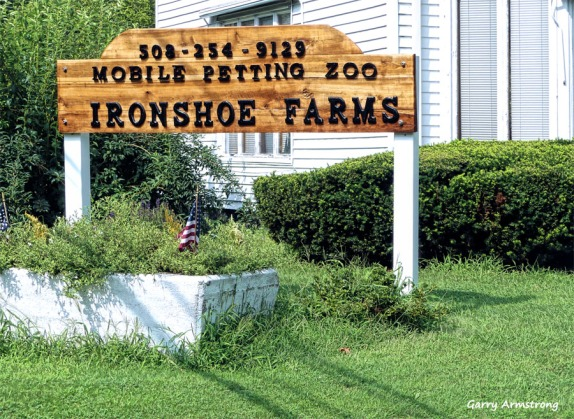 180-Ironshoe-Farm-GAR-170818_126