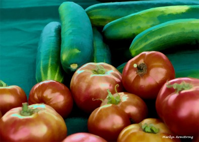 180-Graphic-Vegetables-Farm-MAR-170818_001