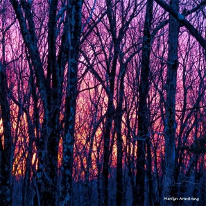 180-Square-Equinox-Sunrise-03102015_11