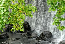 180-Tree-Falls-Manchaug-Rocks-MAR-22092018_2012