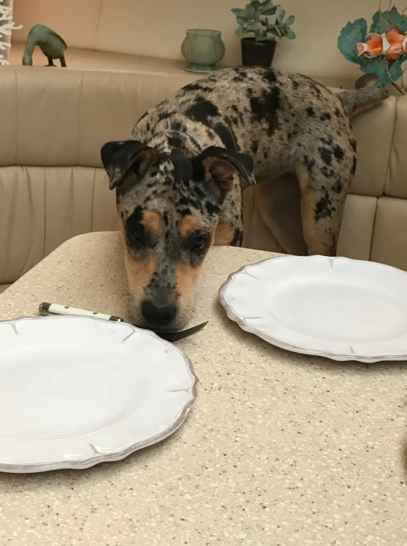 Houla at the dining table