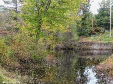 180-2-Reflection-River-RI-GAR-14102018_015