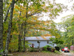 180-Autumn-At-Home-Foliage-22102018_205