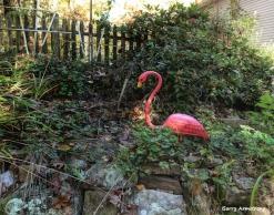 180-Flamingo-Foiliage-Home-GAR-25102018_219