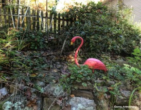 180-Flamingo-Foiliage-Home-GAR-25102018_219