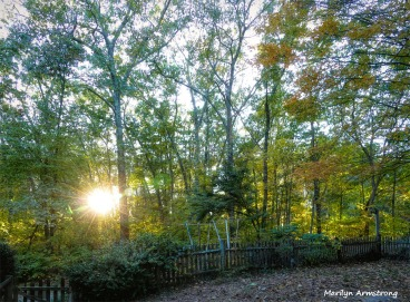 180-Front-Sunny-sunset-21102018_108