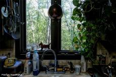 180-Working Kitchen-Foliage-Home-19102018_012