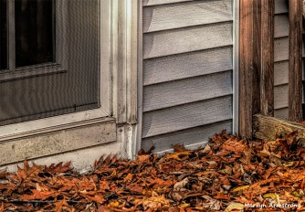 180-deck-autumn-oak-leaves-golden-oaks-04112018_003