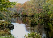 180-River-Home-2-20181014_111