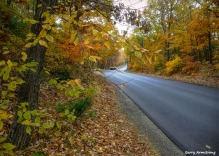 Photo: Garry Armstrong - The last of autumn in early November