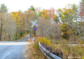 180-RR-Crossing-Chestnut-St-MAR-01112018_004