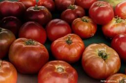 180-Tomatoes-MAR-170818_095