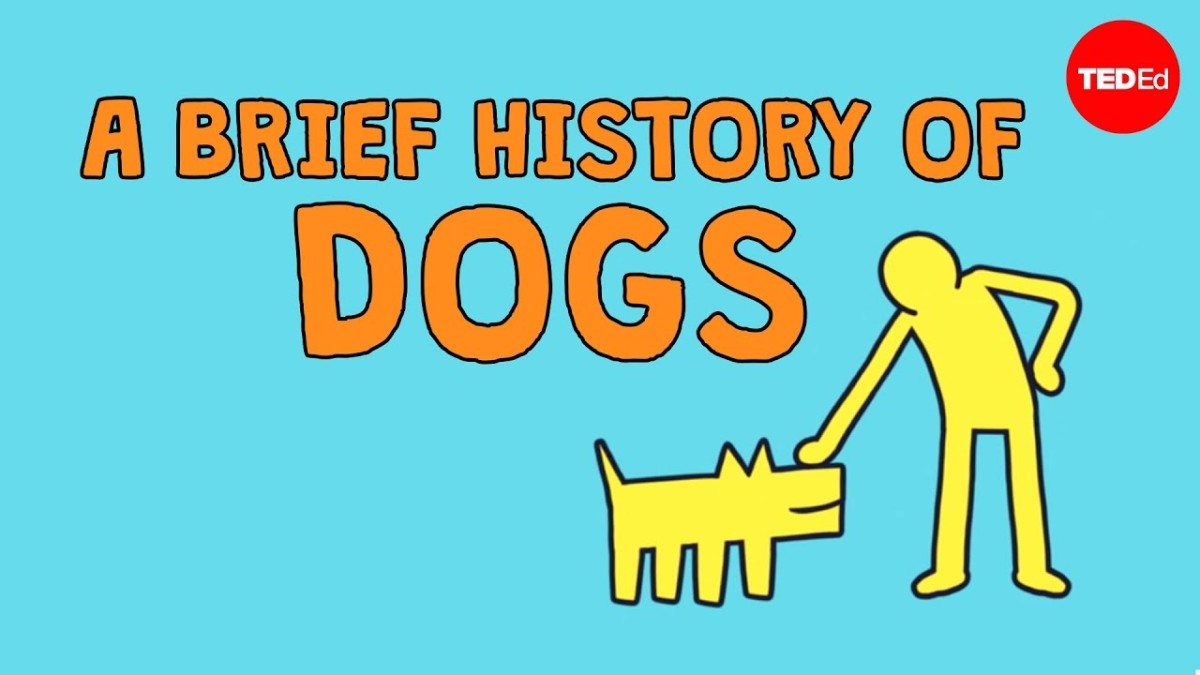 A Brief History OfDogs