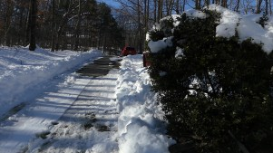 Our long, long driveway after the plowing ...