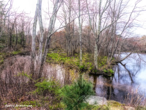 180-Island-in-River-Rhode-Island-GAR-04252019_151