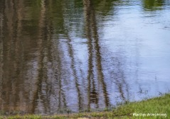 180-Reflections-Rhode-Island-Mar-04252019_048