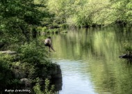 180-Jump-Kids-River-Play-Mar-05252019_045