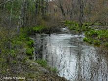 180-River-Islands-Rhode-Island-Mar-04252019_075