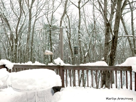 180-Snowy-Deck-03042019_004