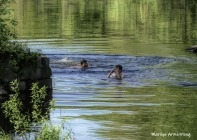 180-Swimming-Kids-River-Play-Mar-05252019_028