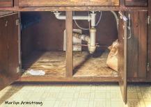 300-under-the-sink-kitchen-new-pipies-05032019_030