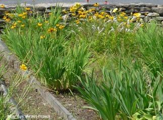 180-Flowers-Riverside-07302019_011