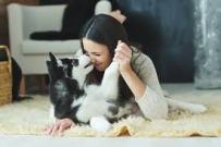Dog Bond - love