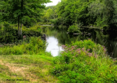 Blackstone River at the end of August