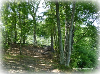 180-Stone-Steps-Mar-Canal-0802-08022019_034