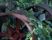 180-Tractor-Aug-Garden-08102019_013