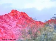180-Scarlet Mountain-Phoenix-Sunset-010816_007