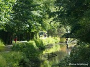 180-Walking-the-Canal-MA-Early-Sept-09082019_010