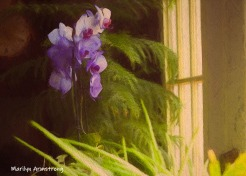 300-oil-texture-landscape-purple-orchids-09152019_004