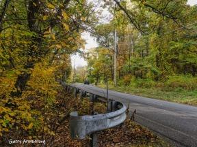180-Autumn-Home-Road-GAR-20191016_059