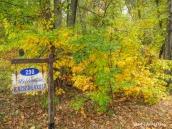 180-Autumn-Kachingerosa-Home-GAR-20191016_050