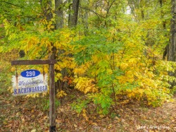 180-Autumn-Kachingerosa-Home-GAR-20191016_050