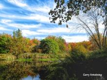 180-Autumn-Leaves-GAR-10132019_206