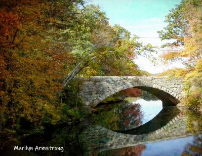 180-Best-Bridge-Autumn-Leaves-MAR-10132019_089