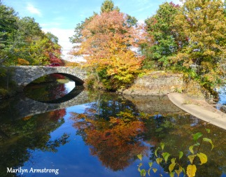 180-Bridge-Autumn-Leaves-MAR-10132019_042