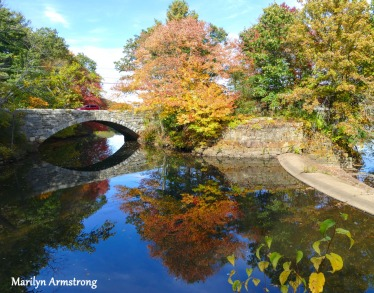 180-Bridge-Autumn-Leaves-MAR-10132019_042