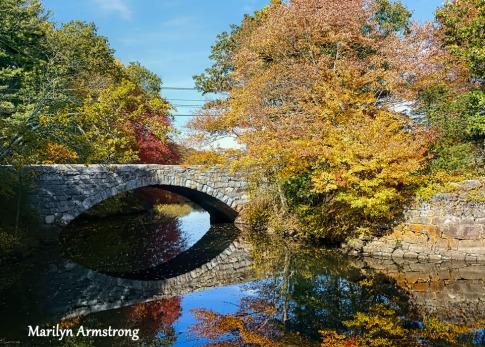 180-Bridge-Autumn-Leaves-MAR-10132019_044