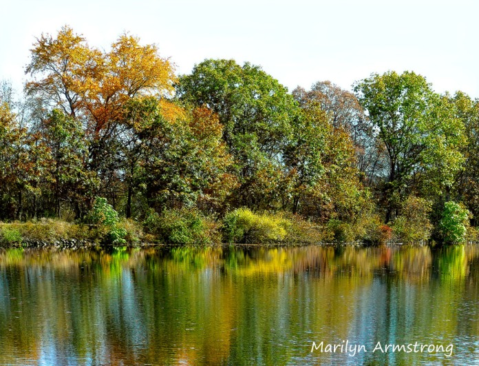 180-Maple and more reflections-River-Bend-Autumn-Mar-20191021_103