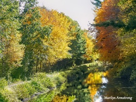 180-Path by Canal-Autumn-Leaves-MAR-10132019_083